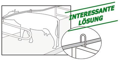 interessante Lösung: flexibles Nackensteuer in Liegebox
