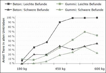 Befunde an Karpalgelenken bei Mastbullen auf Beton und Gummi im Vergleich: weniger häufig und geringerer Schweregrad auf Gummi