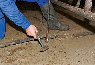 alte, defekte Matten werden mithilfe von Hammer und Nageleisen