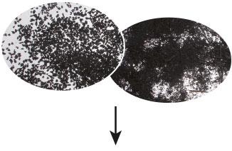 Gummigranulat und Raumehl werden aus recycelten Altreifen gewonnen