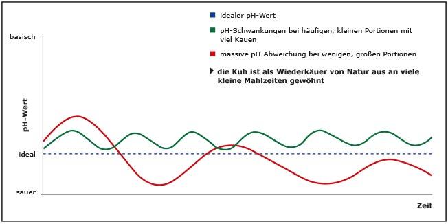 Pansen-pH-Wert im Vergleich bei vielen kleinen und wenigen großen Portionen in der Milchviehhaltung