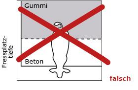 bei Teilauslegung mit Gummimatten in der Vollspaltenbucht sollen die Tiere nicht mit den Hinterbeinen auf der Matte stehen