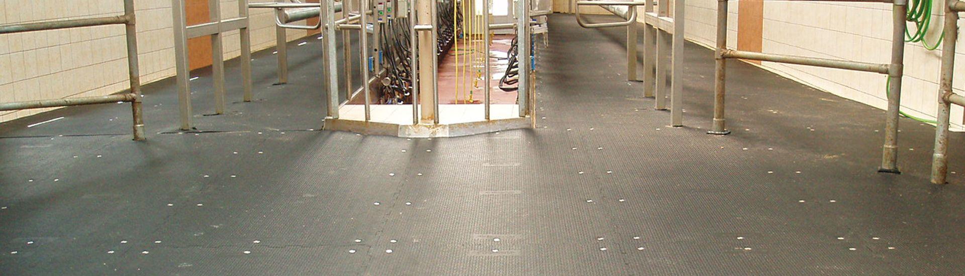 KRAIBURG rubber floorings for walking areas without scraper in dairy housing