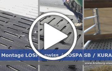 LOSPA swiss / SB / KURA SB
