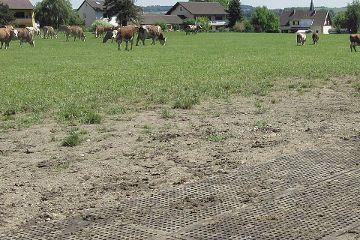LOMAX Lochgummimatte zur Bodenstabilisierung und Befestigung von (matschigen) Flächen auf der Weide