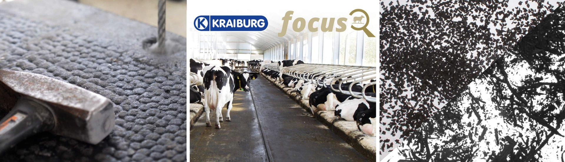 Facts worth knowing about KRAIBURG rubber floorings / mats for cows, bulls and calves